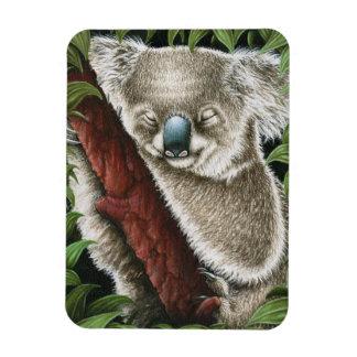 Sleeping Koala Premium Magnet