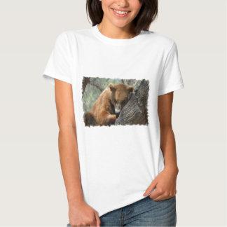 Sleeping Kodiak Bear  Ladies t-Shirt