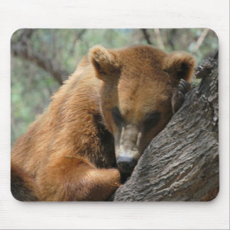 Sleeping Kodiak Bear  Mouse Pad