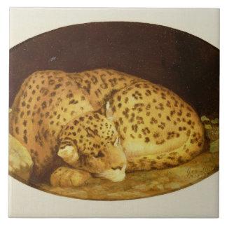 Sleeping Leopard, 1777 (enamel on biscuit Tile