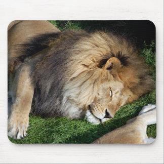 Sleeping Lion Mousepad