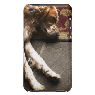 Sleeping Llewelyn setter iPod Touch Case