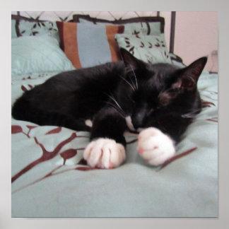 Sleeping Lucy Print