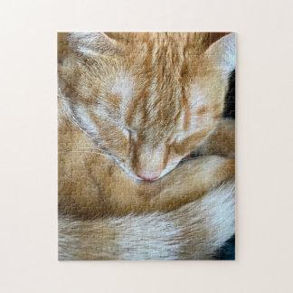 Sleeping orange tabby cat jigsaw puzzle