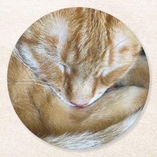 Sleeping orange tabby cat round paper coaster