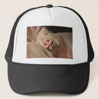 Sleeping Pig Trucker Hat
