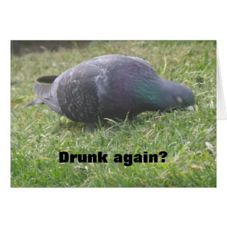 Sleeping Pigeon Funny Custom Birthday Card