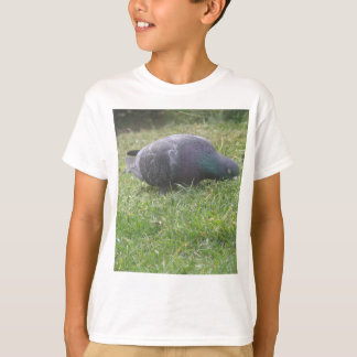 Sleeping Pigeon Kids T Shirt