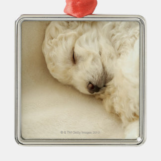 Sleeping Poodle puppy Christmas Ornament