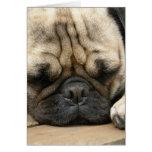 Sleeping Pug Greeting Card