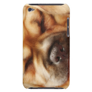Sleeping Pugalier Puppy Close up iPod Touch Cover