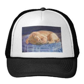sleeping puppy cap