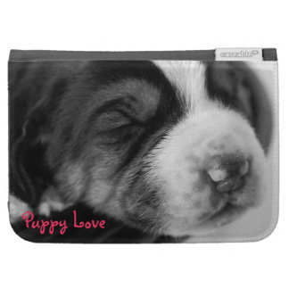Sleeping Puppy Kindle 3 Cases