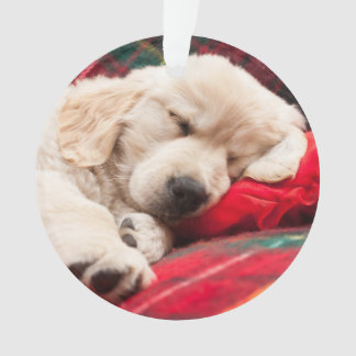 Sleeping Puppy On Plaid Ornament