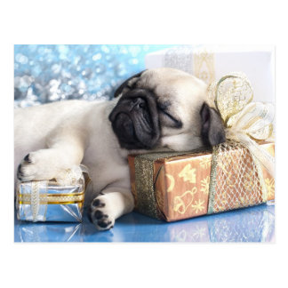 Sleeping  puppy pug and Christmas gifts Postcard