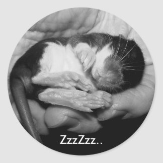 Sleeping Rattie Sticker