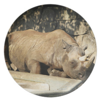 Sleeping Rhino Plate