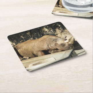 Sleeping Rhino Square Paper Coaster