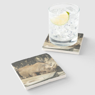 Sleeping Rhino Stone Coaster