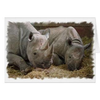 Sleeping Rhinos Greeting Card