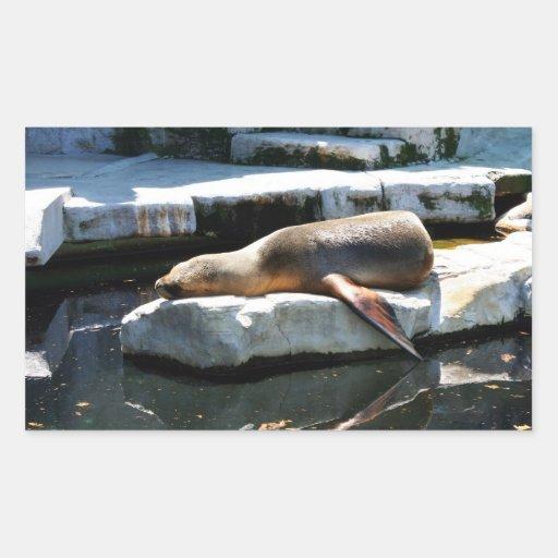 Sleeping Seal Rectangular Stickers