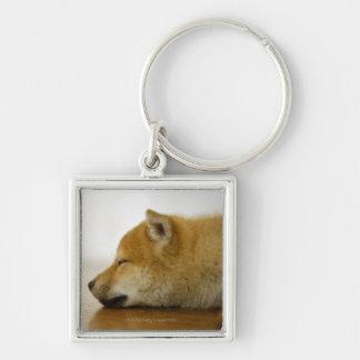 Sleeping Shiba-ken 3 Silver-Colored Square Key Ring