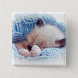Sleeping Siamese Kitten Paws 15 Cm Square Badge