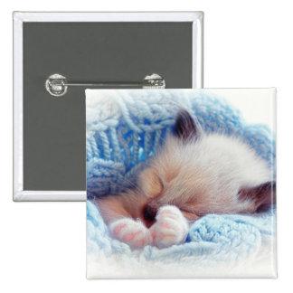 Sleeping Siamese Kitten Paws Pin