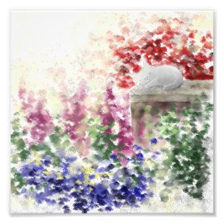 "Sleeping Small Grey Cat in a Garden 8"" x 8"" Print"