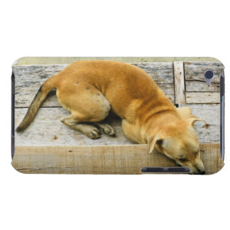 Sleeping street dog in Thailand iPod Case-Mate Cases