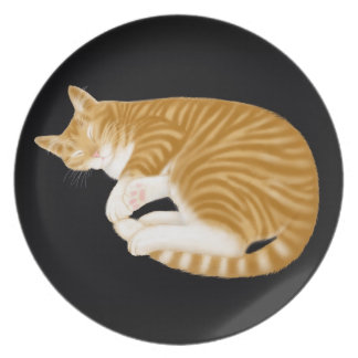 Sleeping Tabby Cat Nap Plate