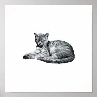Sleeping Tabby Cat Vintage Animal Sketch Poster