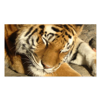 Sleeping Tiger Double-Sided Standard Business Cards (Pack Of 100)