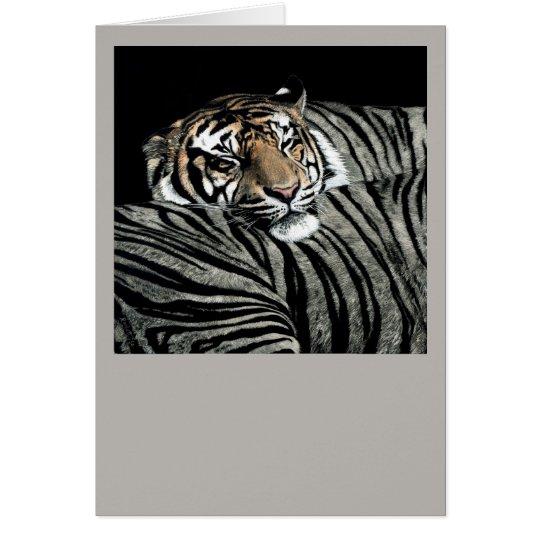 Sleeping Tiger Card