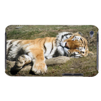 Sleeping Tiger iPod Touch Case
