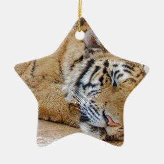 Sleeping Tiger Ceramic Star Decoration