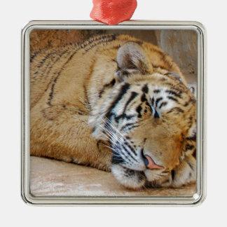 Sleeping Tiger Christmas Ornament