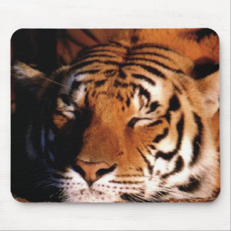 """Sleeping Tiger"" Mousepad"