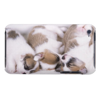 Sleeping welsh corgi puppies iPod touch case