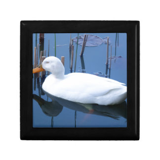 Sleeping White Duck Reflection Small Square Gift Box