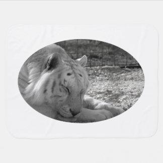 sleeping white tiger bw photograph of huge cat pramblanket