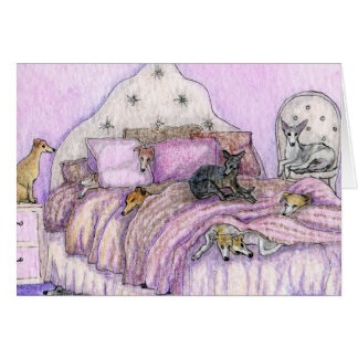 Sleepover - whippets and greyhounds galore! card