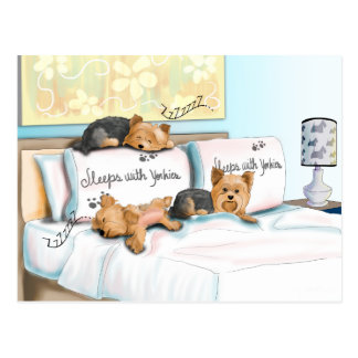 Sleeps with Yorkies by Catia Cho Postcard