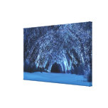 Sleepwalker Woods (Christmas) Stretched Canvas Print