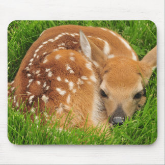 Sleepy Baby Fawn Mouse Pad