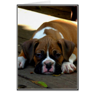 Sleepy boxer puppy greeting card