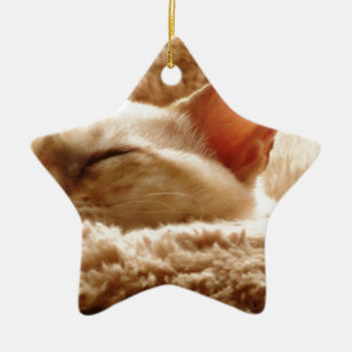 Sleepy Cat Ceramic Star Decoration
