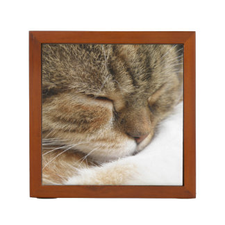 Sleepy Cat Desk Organiser