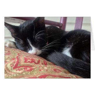Sleepy Cat on Front Porch Rocking Chair Card