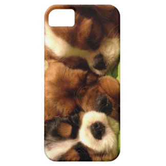 Sleepy cavalier pups phone case